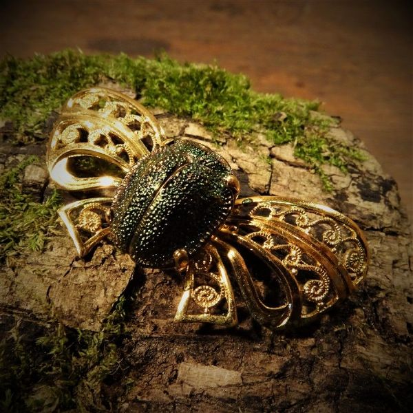Real Beetle Gilt Bow Brooch
